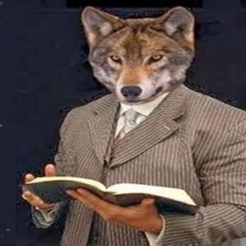 """Resultado de imagem para lobo em pele de ovelha"""""""